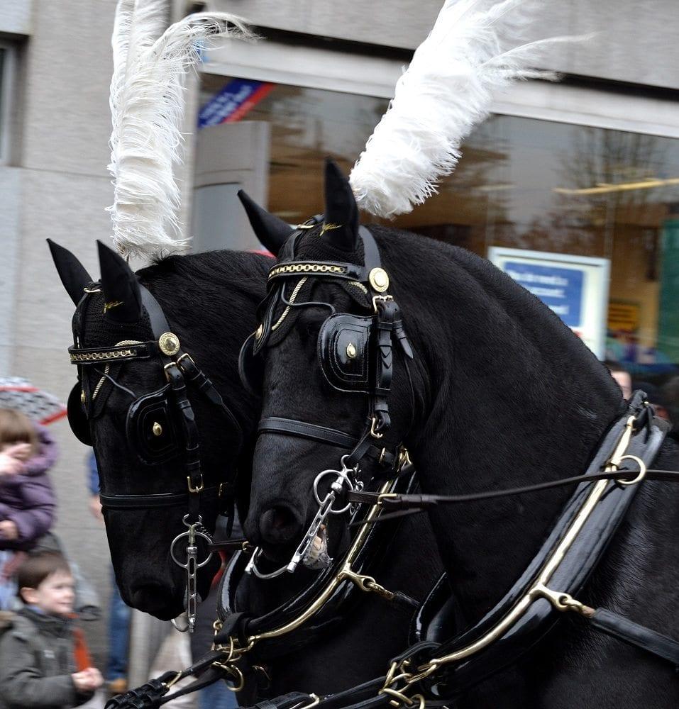 Paisley Photographs Santa Parade