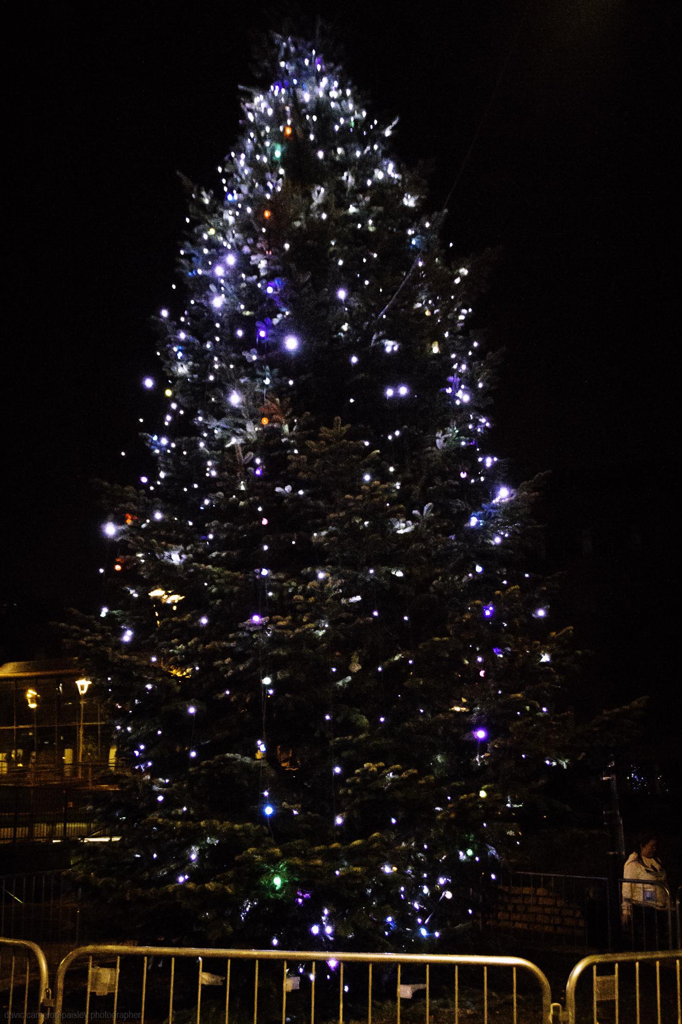 paisley christmas lights photograohs 2018