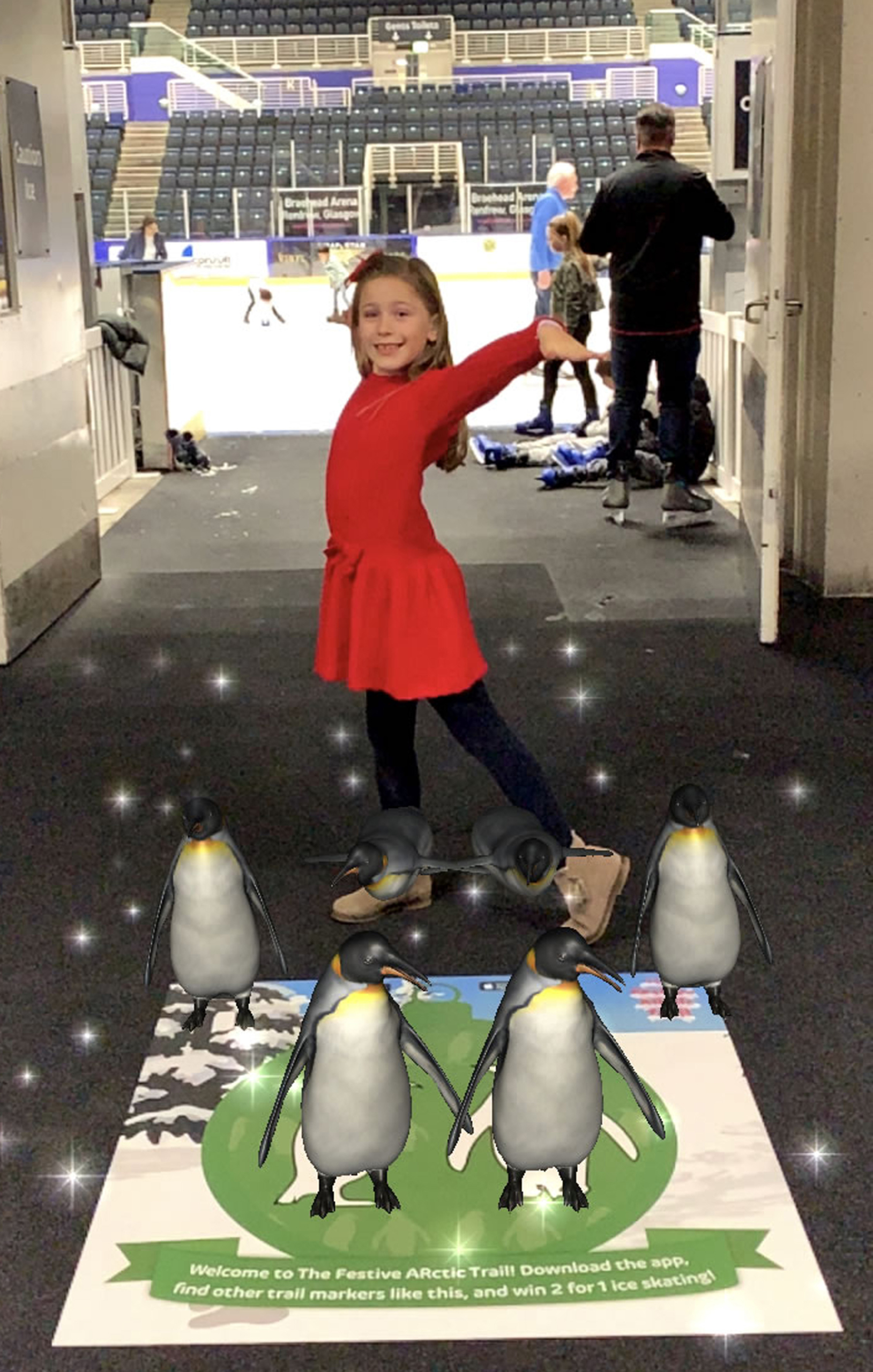 penguins ice rink